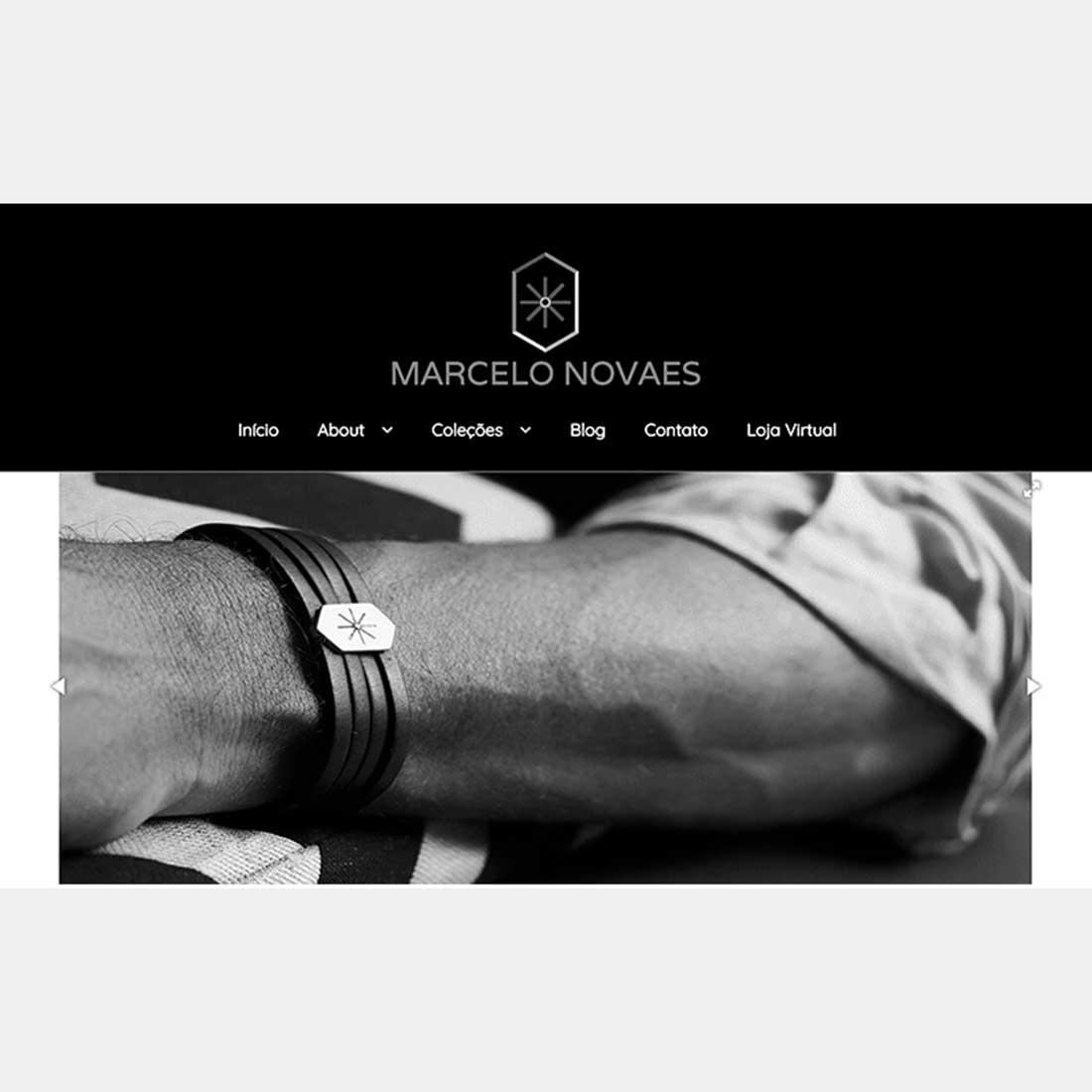 Website Marcelo Novaes